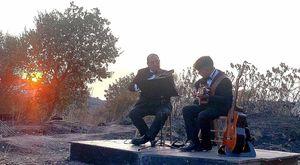 Massa Lubrense, concerto all'alba sulle ceneri dell'incendio che ha distrutto gli oliveti
