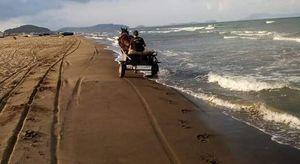 Escrementi di cavallo sulla spiaggia nel Napoletano: indignazione social