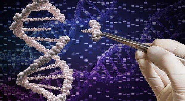 Tumore rischio metastasi è scritto nel Dna dalla nascita