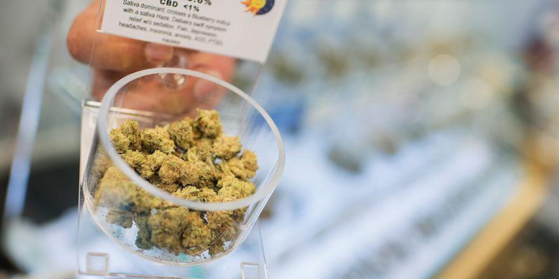 La legalizzazione della marijuana non sembra influire sul consumo dei giovani - Il Post
