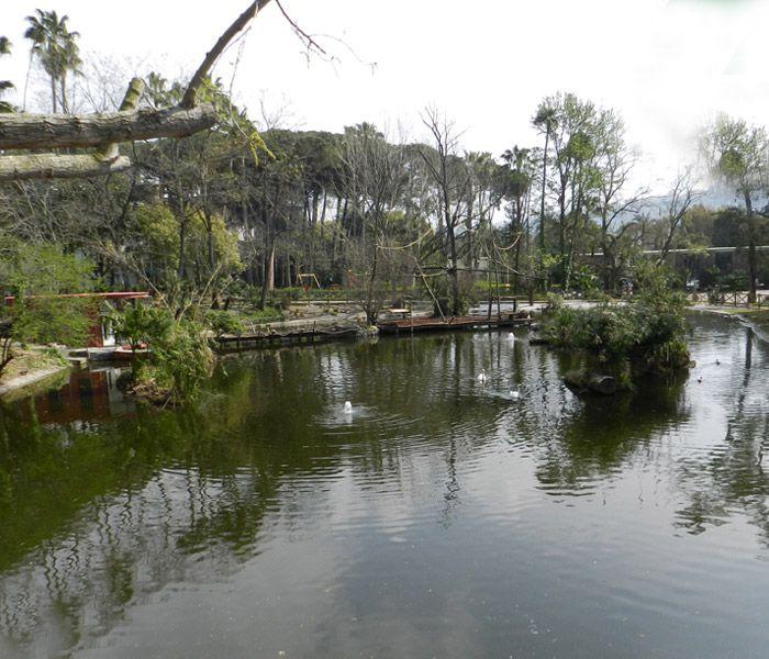 Riapre zoo Napoli restyling nuovi arrivi