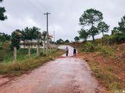 🇲🇲 緬甸 | Kalaw 健行 : 穿著球鞋,我走路去茵萊湖(一)