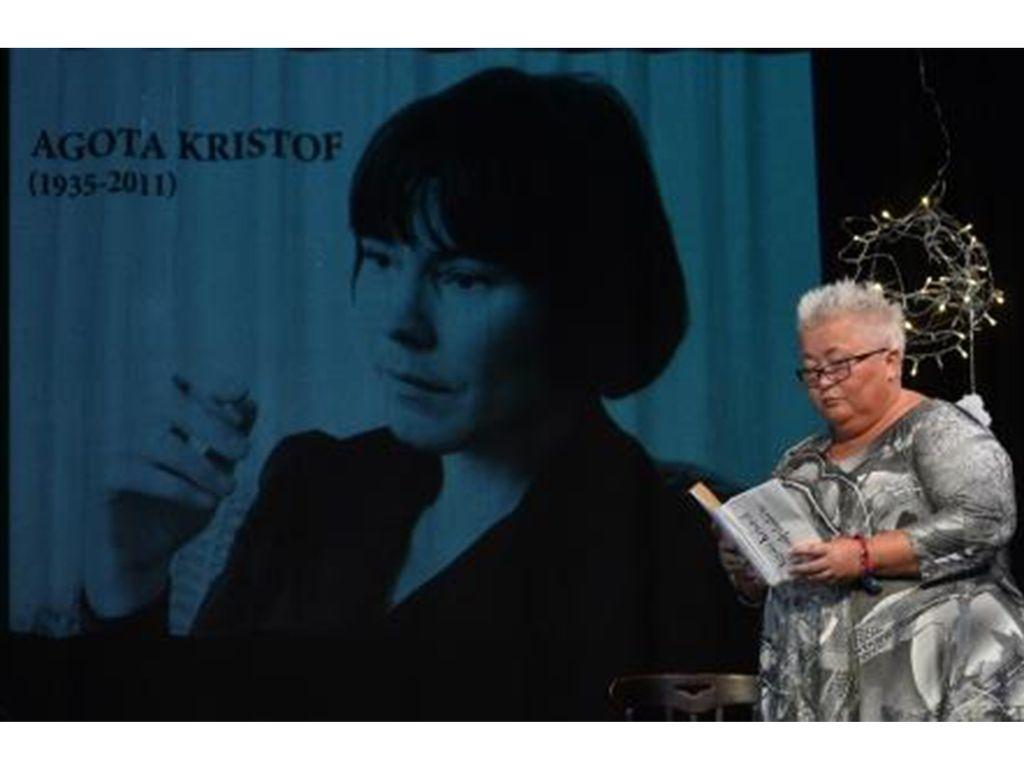 Falusi Mariann: Az Analfabéta