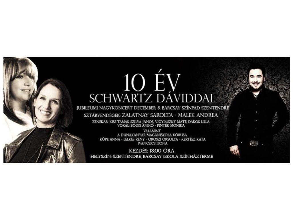 10 ÉV Schwartz Dáviddal - zenés időutazás