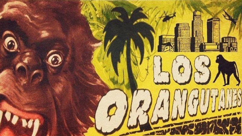 Támadnak a majmok – itt az első magyar cumbia zenekar!