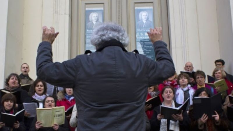 Bach-koncertek aluljárókban, pályaudvarokon – és az Állatkertben is