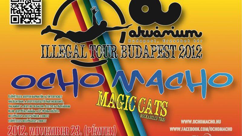 A nyolc hím alámerül - Ocho Macho Illegál turné