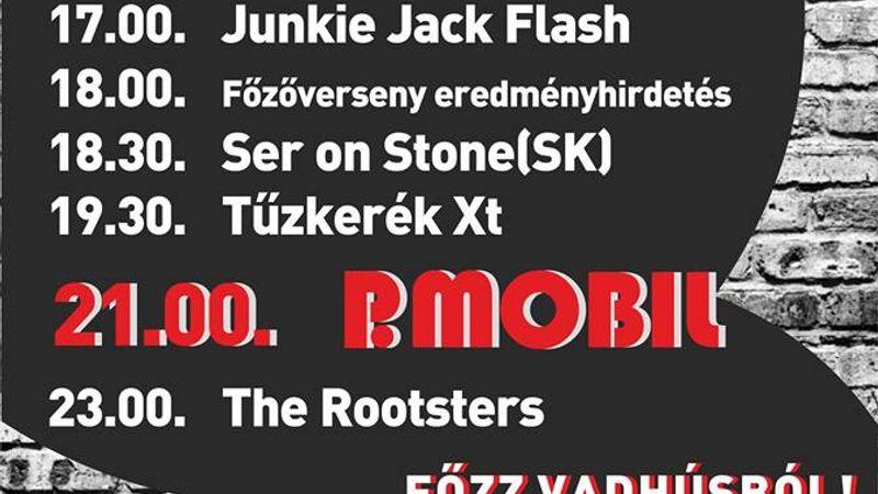 Vadulj be! VisegRock fesztivál P.mobillal, Tűzkerékkel