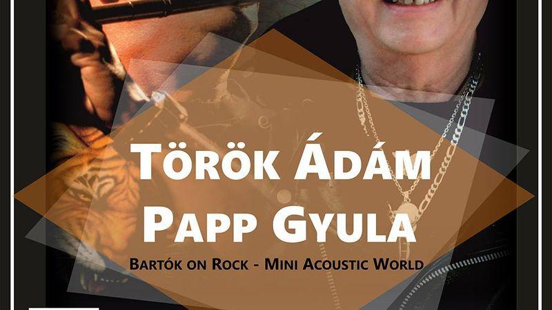 Rockosított Bartók koncertre készül Török Ádám és Papp Gyula