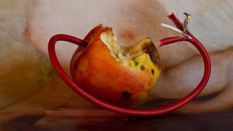 Mérgezett almák: énekesek, táncosok és elektronikus zene a Műcsarnokban