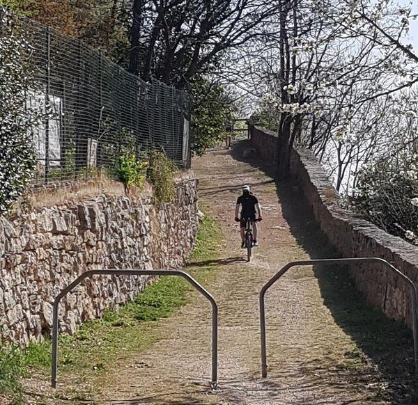 Nuova ciclabile da Centochiavi a Ponte Alto: affidati i lavori, ecco dove passerà