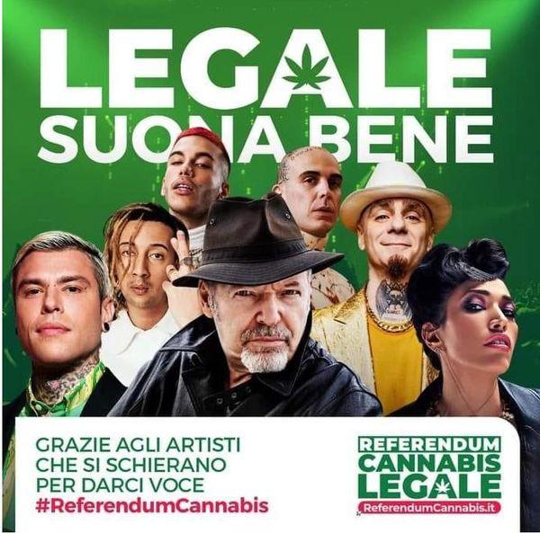 Referendum per la cannabis legale, un boom di firme e fra i testimonial c'èVasco Rossi