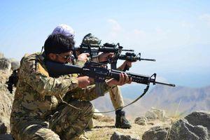 "Afghanistan, Massoud: ""Non rinunceremo mai alla lotta in Panshir"""