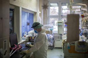 Covid: un'altra vittima. Sedici contagi, restano tre i pazienti ricoverati in intensiva - Libertà Piacenza