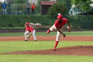 Piacenza Baseball, sfida interna contro Avigliana per proseguire la striscia positiva - Libertà Piacenza