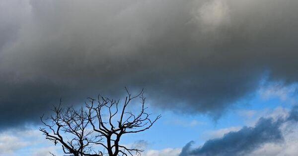 Trübes Wetter im Südwesten: Frühling lässt auf sich warten - Baden-Württemberg - Ludwigsburger Kreiszeitung