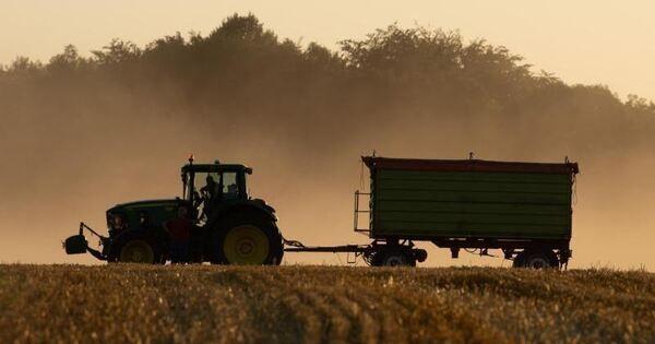 Jeder siebte Hektar Agrarfläche ökologisch bewirtschaftet - Baden-Württemberg - Ludwigsburger Kreiszeitung