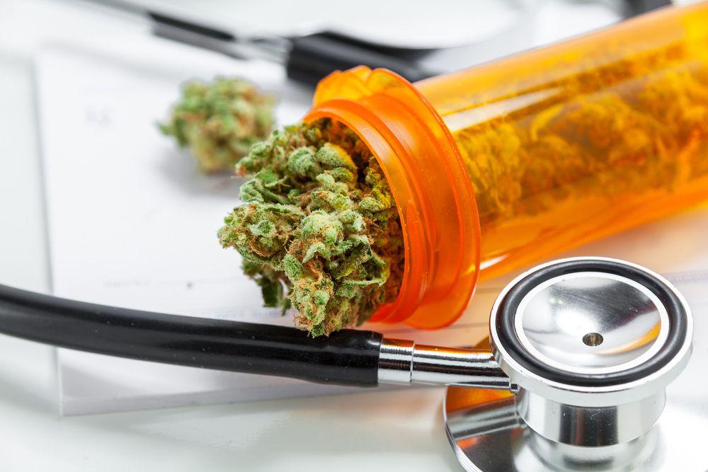Studie - Cannabis is wél medicinaal - Mediwietsite