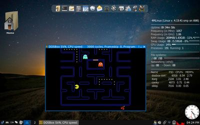 10 Pacman using Dosbox