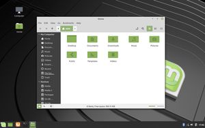 05.0 Nemo File Manager