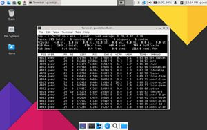 17 Resouce usage with htop