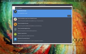 20 Rigo Application Browser - Customization