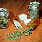 USA: Verkeimtes Cannabis gef