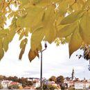 Mirišu pečene paprike – jesen je stigla