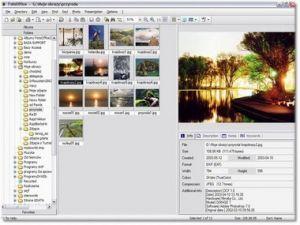 Foto Office 3 Pro Polski+witaminka