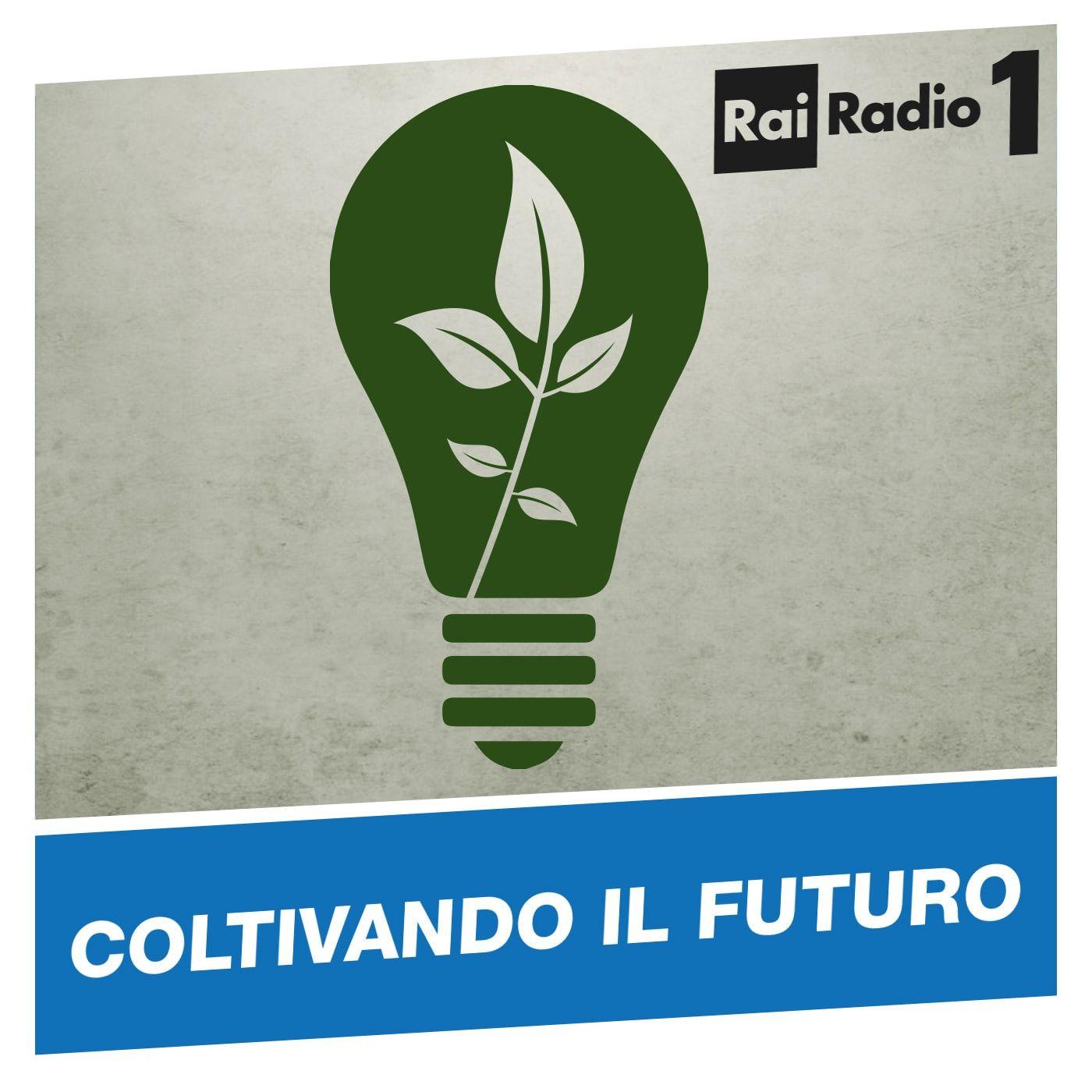 COLTIVANDO IL FUTURO del 14/10/2017