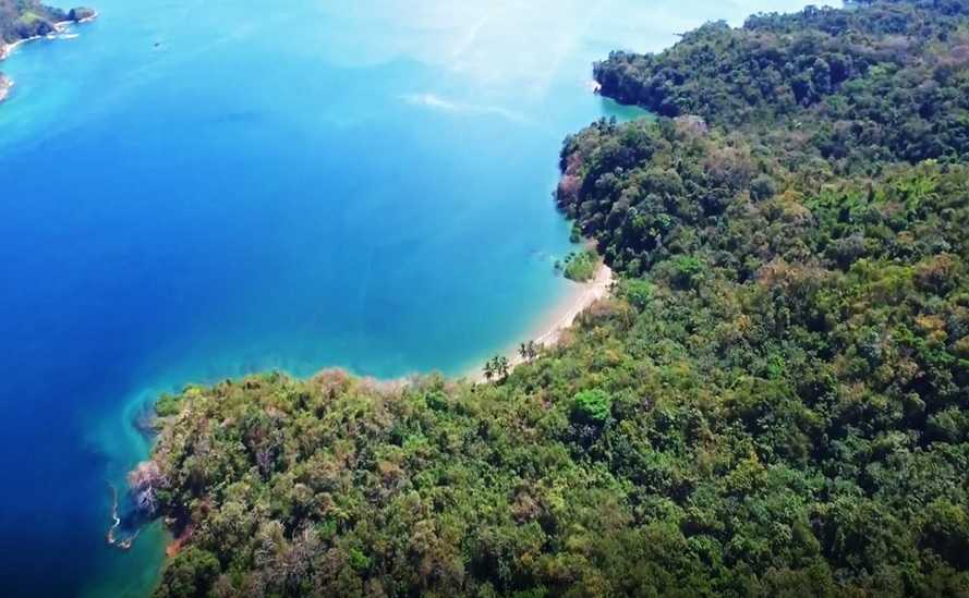 1, 500 Hectares For Sale In Panama -  Island Property