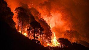 Assicurazioni, la crisi climatica ha causato 40 miliardi di danni in sei mesi