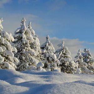 Kada će sneg u Beogradu – šta kaže statistika
