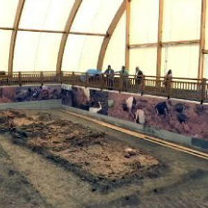 Arheološki lokalitet Drenovac krije neolitski megalopolis