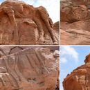 Kamile u stenama Saudijske Arabije starije od piramida u Gizi