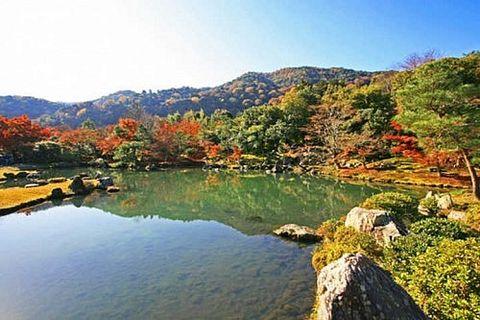 【京都紅葉情報】開車自駕遊, 8個超多停車位又能欣賞京都紅葉的景點推薦