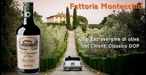 【Gusto Italiano】特級初榨冷壓意大利橄欖油生產過程 (Olio Extravergine di Oliva)