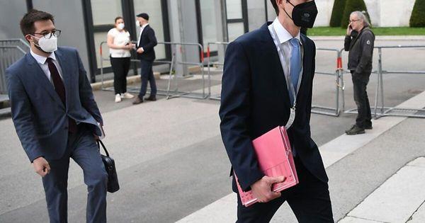 Anzeige gegen Bonelli erschwerte Befragung in U-Ausschuss