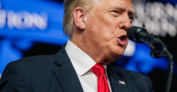 Ex-US-Präsident Donald Trump wollte Wahl offiziell für korrupt erklären lassen