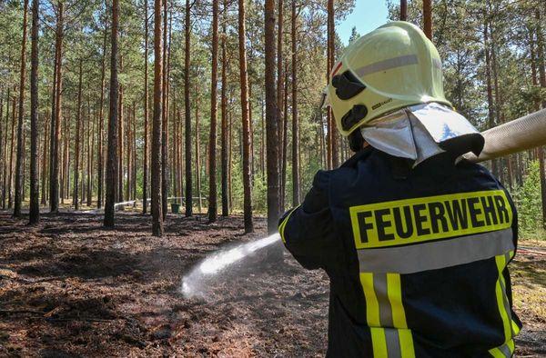 Hitzewelle im Südwesten: Erhöhte Waldbrandgefahr in Baden-Württemberg