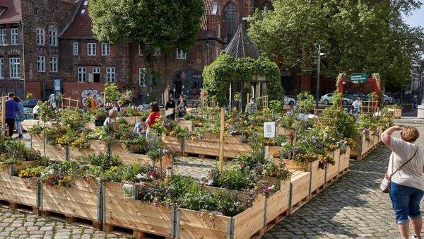 150 Hochbeete verwandeln Platz in Lübeck in grünes Labyrith