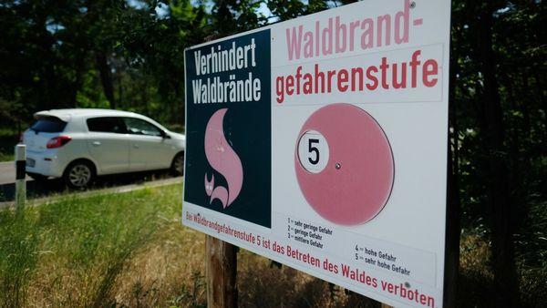 Wetter Reutlingen: Bitte nicht grillen - erhöhte Waldbrandgefahr im Südwesten