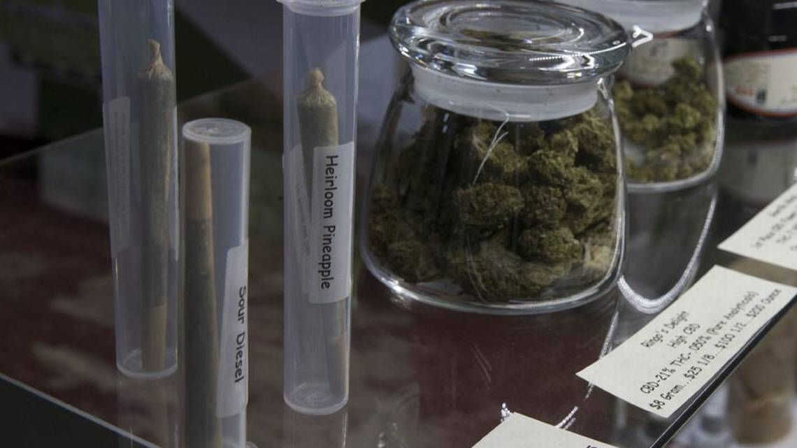 Clinical evidence supports medical marijuana