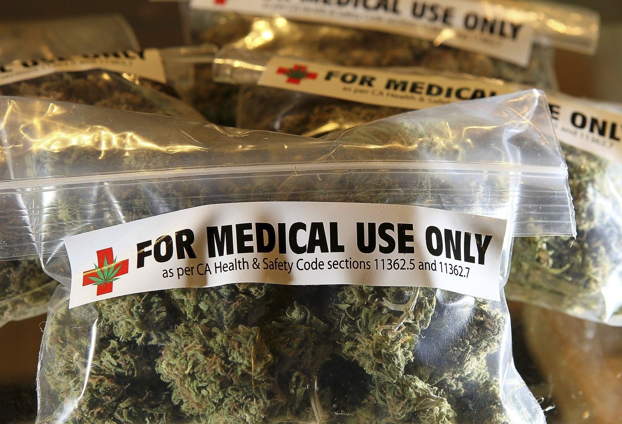 Give Florida doctors flexibility to recommend marijuana | Opinion