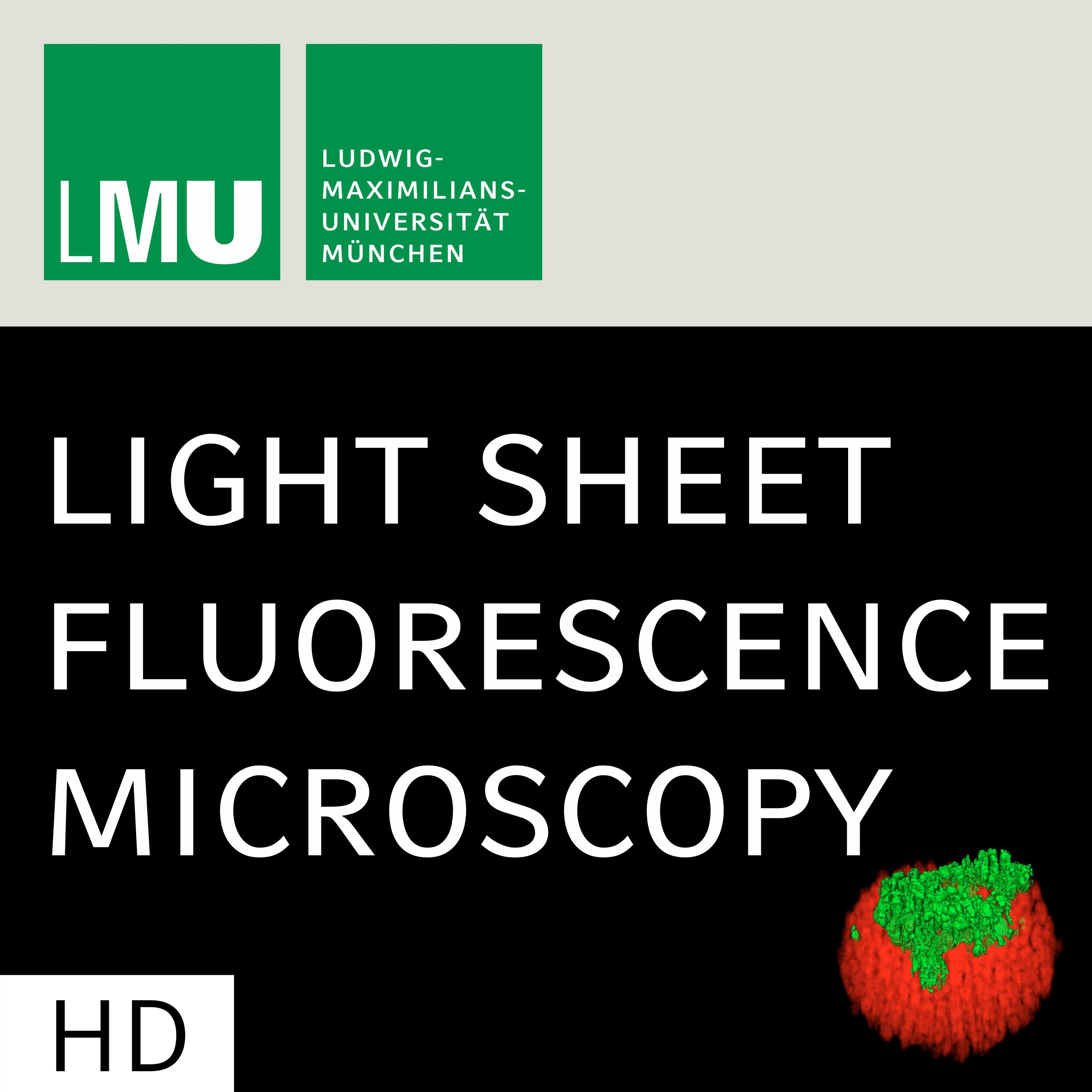 Light Sheet Sheds Light on Tumor Therapy (CC)