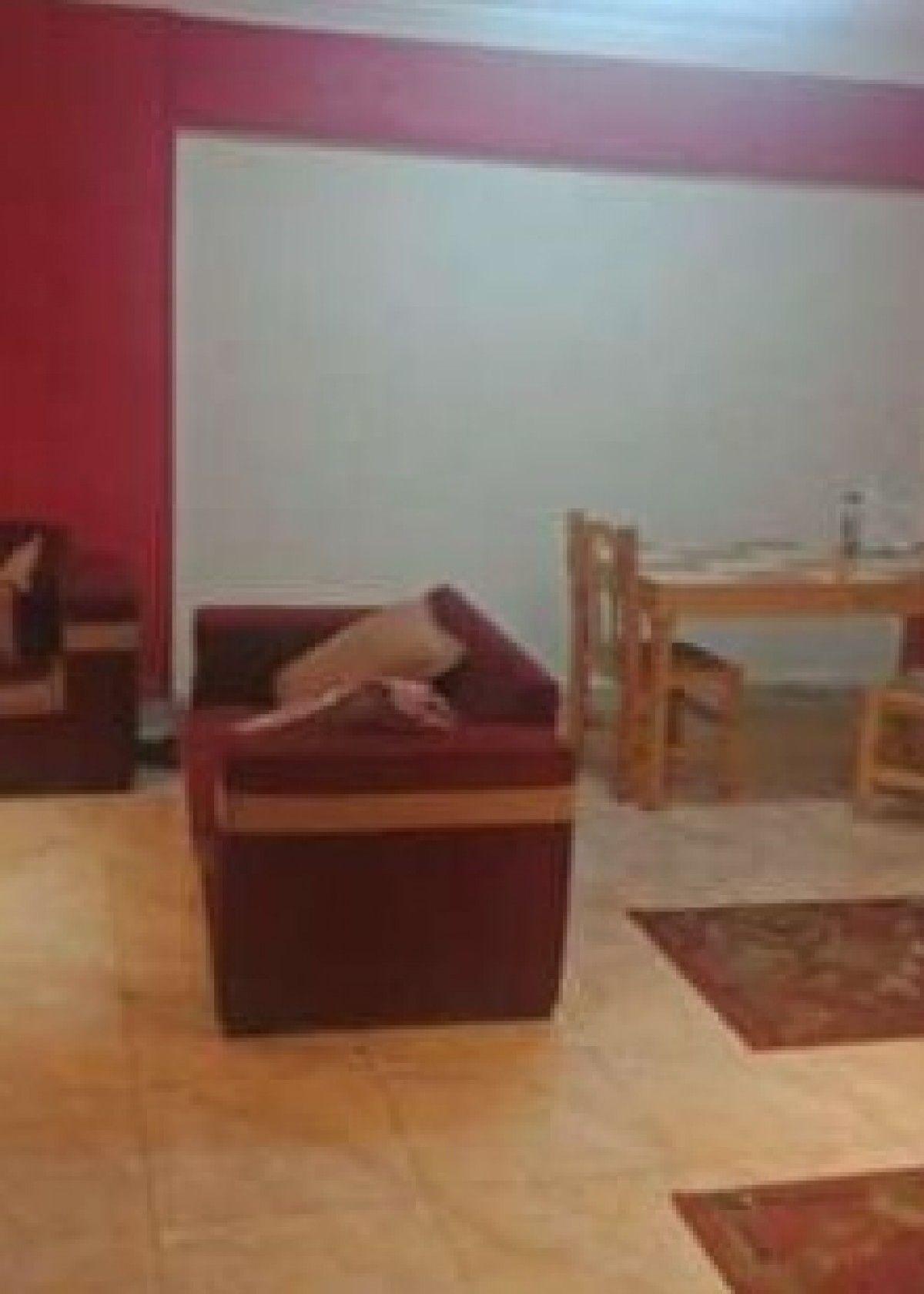 غرفة لشاب بميدان الحصرى