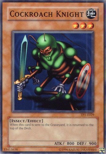 Duel Links Card: Cockroach Knight
