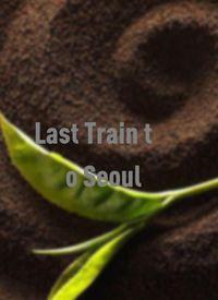 前往首尔的末班车