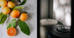 蟑螂怕橘子、九層塔?5種殺蟑螂天然妙方,內行人說酒精也很有效
