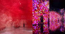 《塩田千春》展覽台北站延長到10月!2021下半年最重磅《teamLab未來遊樂園》10月開展!
